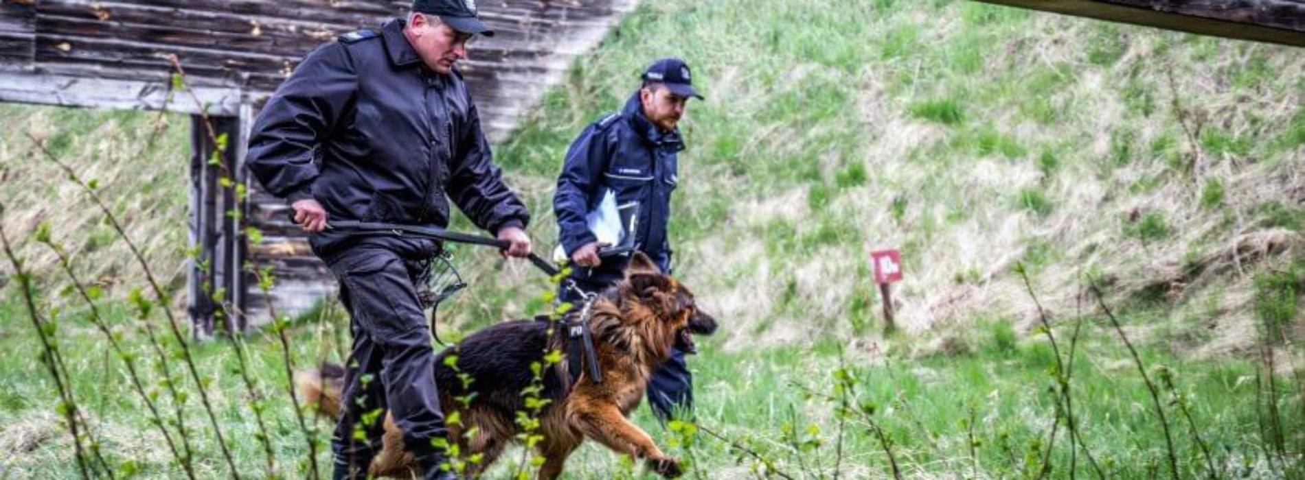 TESTY PSÓW POLICYJNYCH
