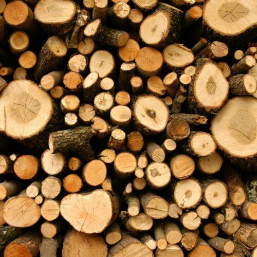 Co należy wiedzieć o rozłupywarce do drewna przed jej zakupem