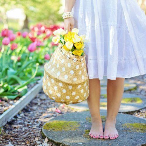 Jak przygotować ogród do wiosny. – Poradnik ogrodniczy